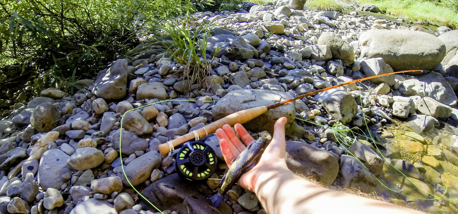 Bangor fly fishing maine fly fish for Maine trout fishing