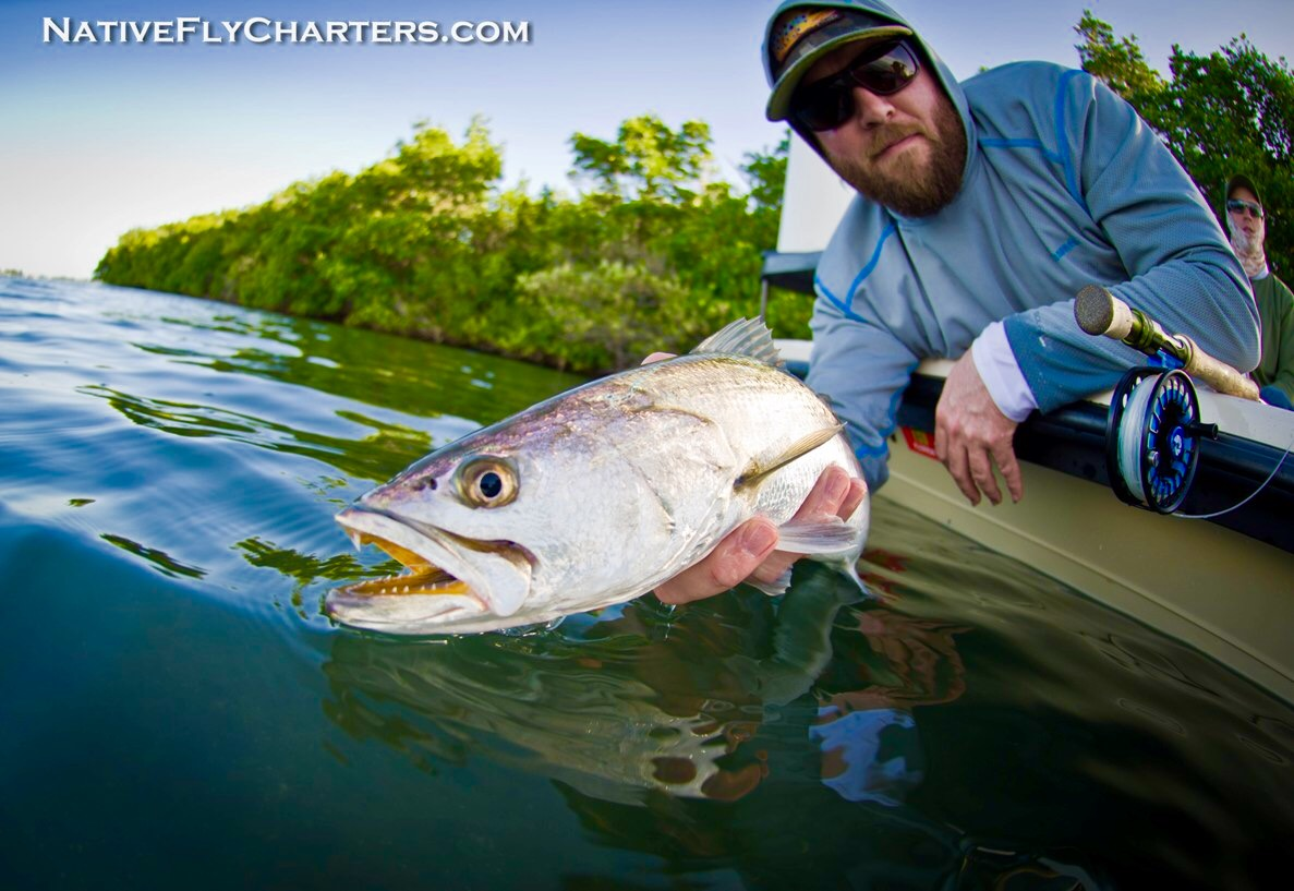 Blogs maine fly fish for Maine fly fishing