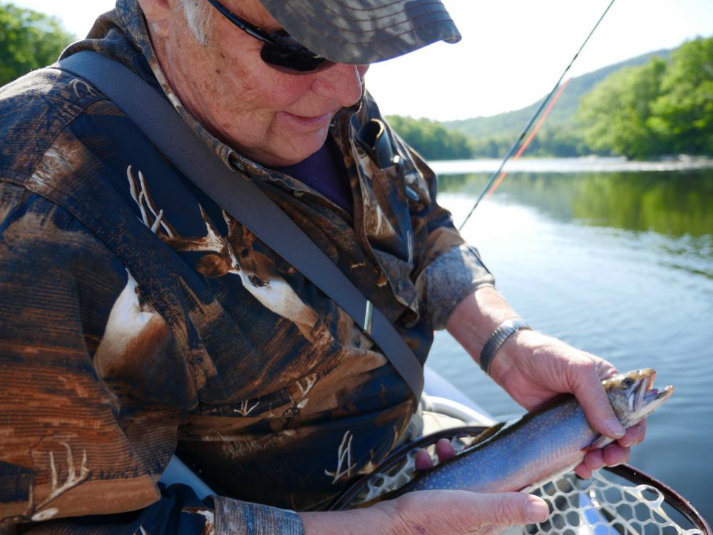 Fish pics fly fishing maine fly fish for Maine trout fishing