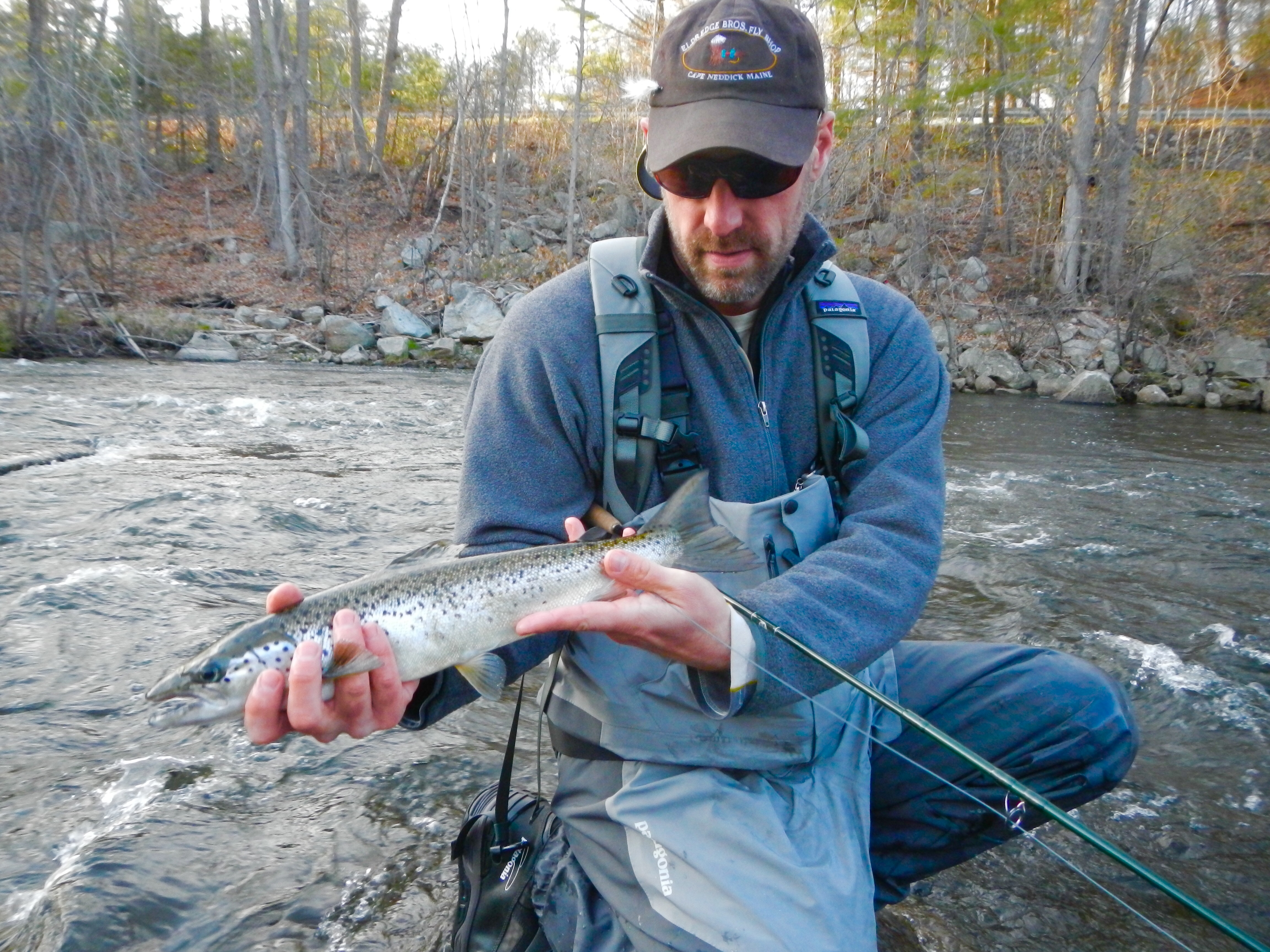 What your year in review look like page 2 fly fishing for Maine trout fishing
